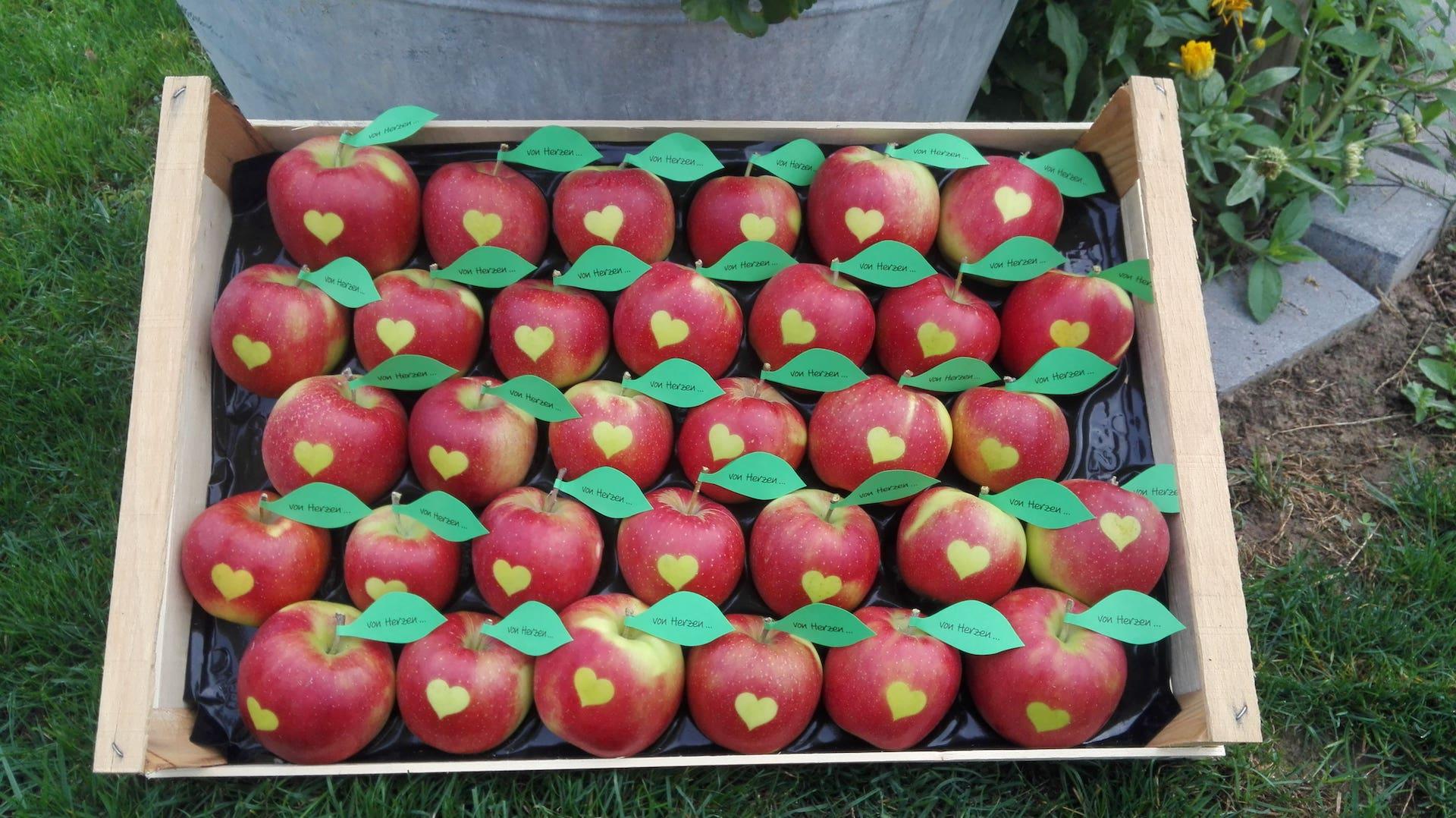 Apfel mit Logo, einem Herzen