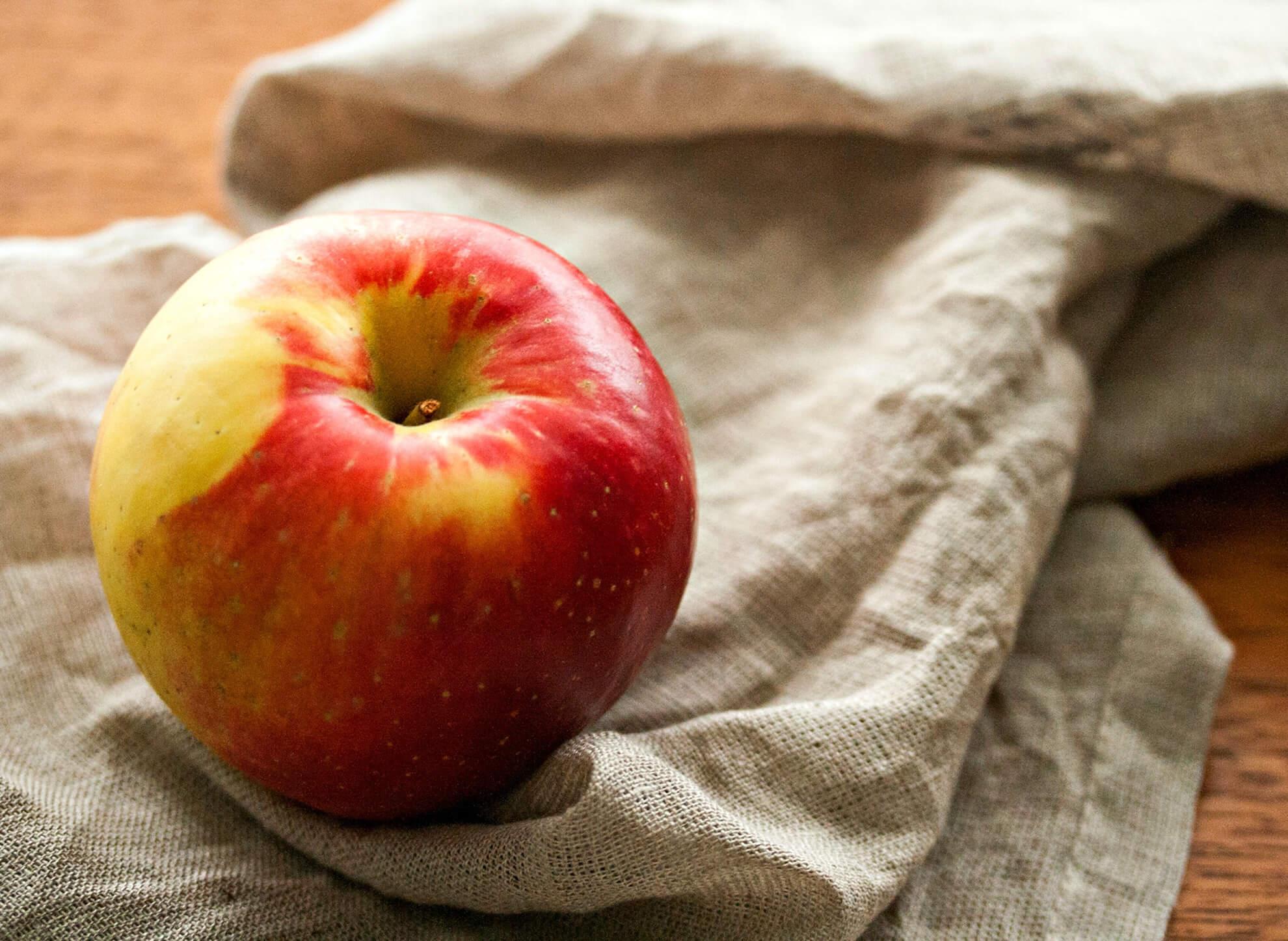 SweeTango Apfelsorte 1