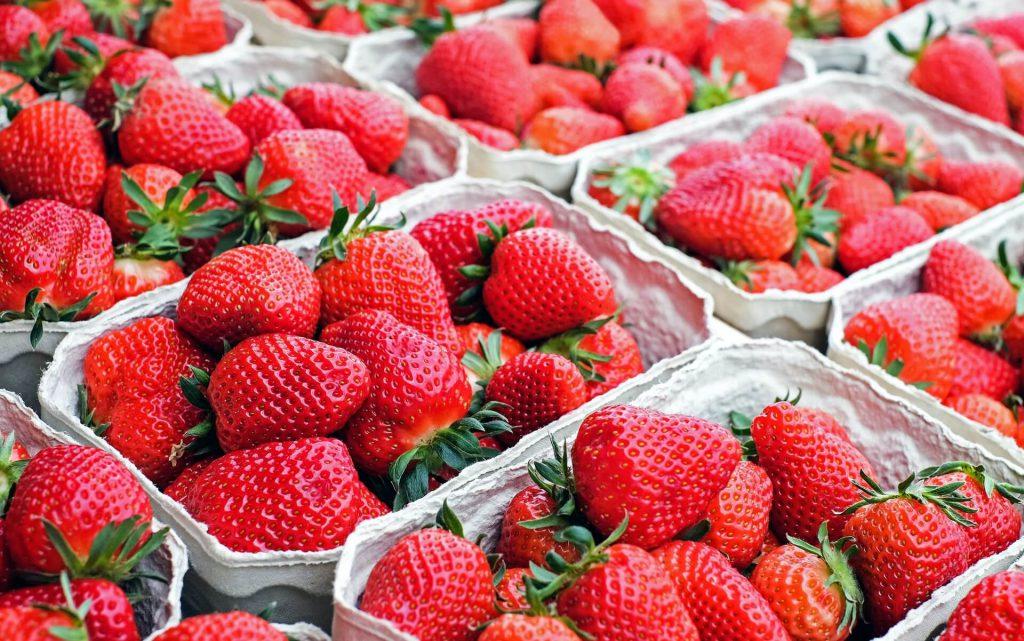 Erdbeeren vom Bodensee in Schalen